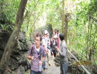 Tour động Phong Nha từ Đà Nẵng