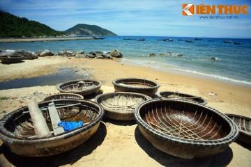 Tour đi bộ dưới đáy biển Cù Lao Chàm