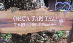 Lịch sử hình thành chùa Tam Thai tại Ngũ Hành Sơn